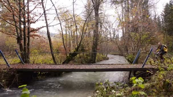 Triglav. Slovinsko. Na podzim. Les. Most přes řeku