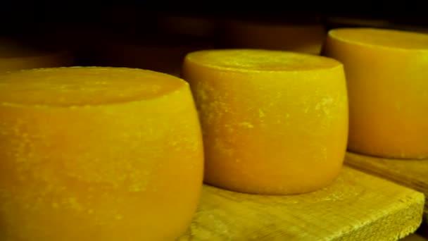 sýr z mléka krav, uložené v dřevěné police
