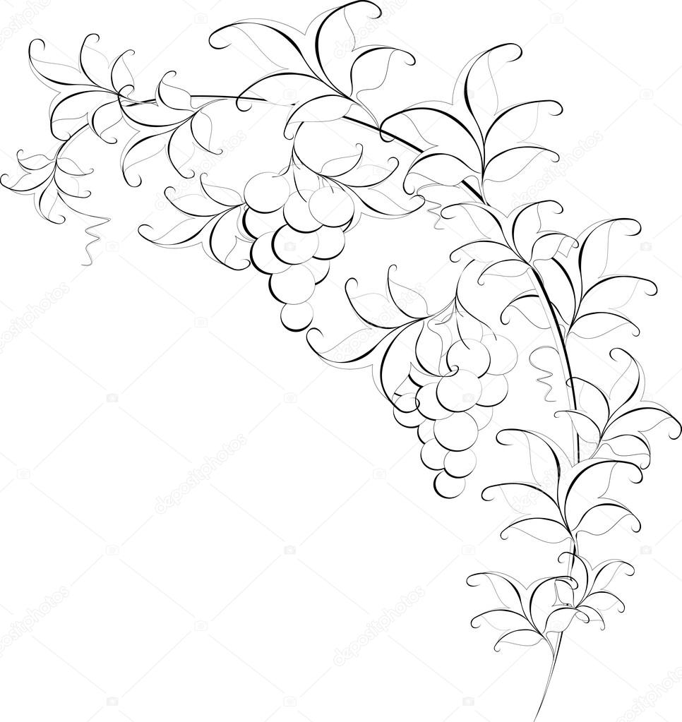 Black and white pattern of branches with grapes. EPS10 vector illustration