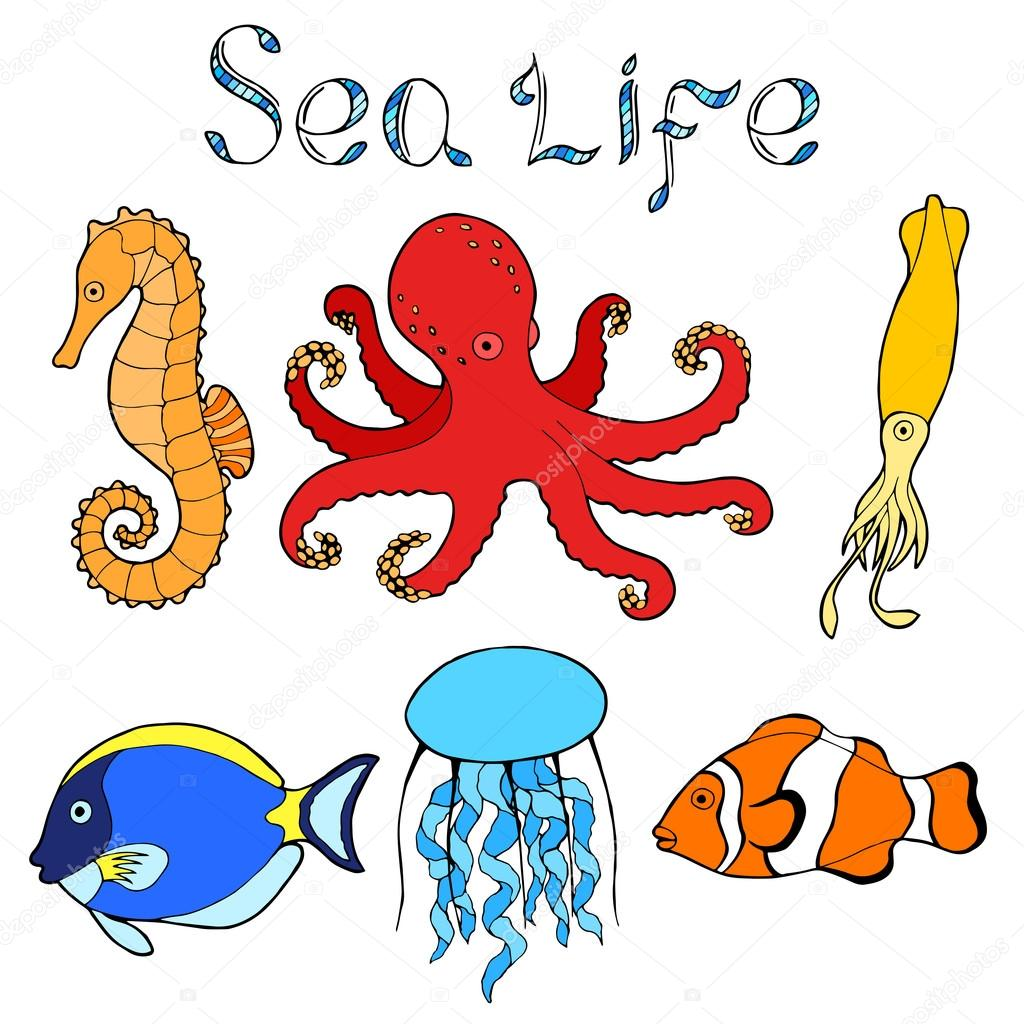 Sea life fish graphic art color isolated illustration vector — Stock ...