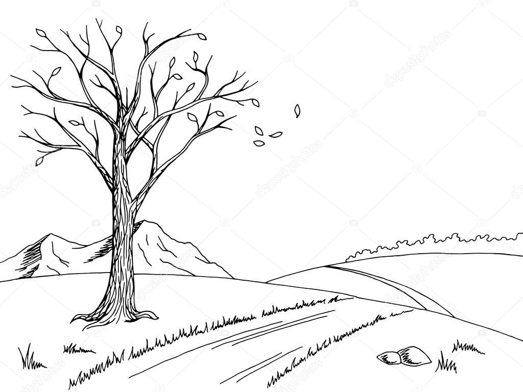 Velha árvore Outono Arte Gráfica Preto Branco Paisagem