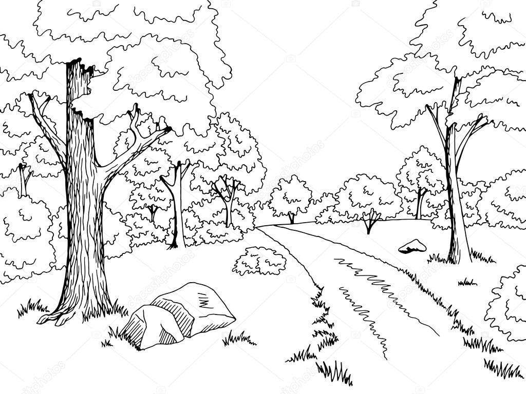 Floresta Estrada Arte Gráfica Preto Branca Paisagem Desenho