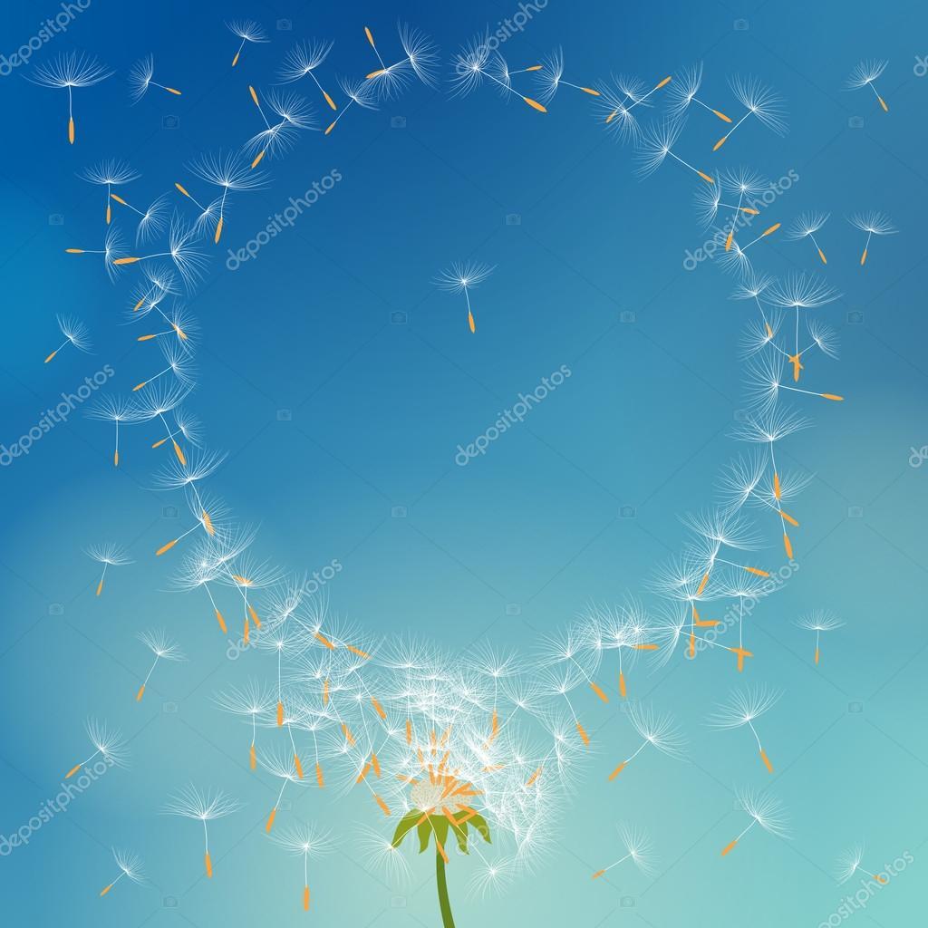 Vector Löwenzahn mit Samen mit dem Wind bilden runden Rahmen weg ...