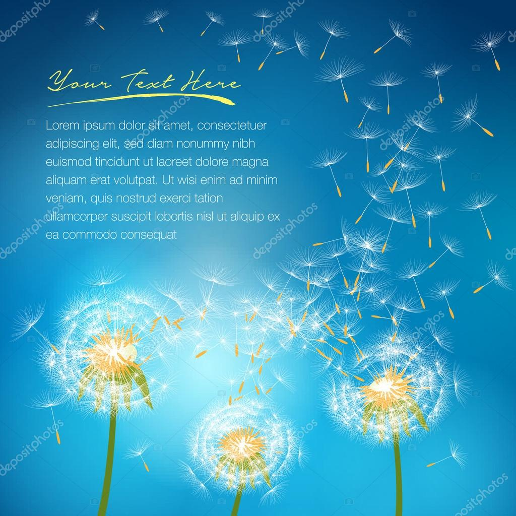 Dandelion flower vector on a wind loses the integrity forming love