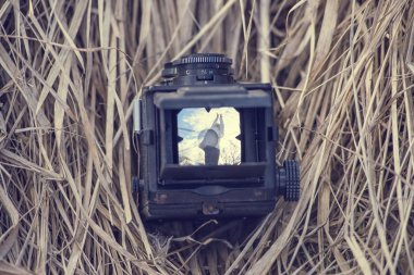 old camera lies on the dry grass