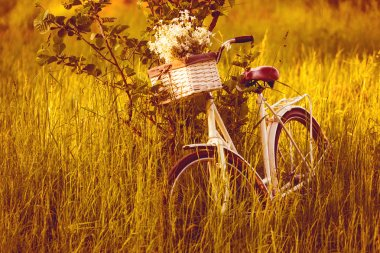 Bike with a basket of flowers