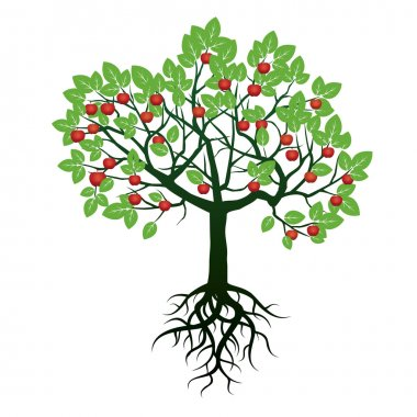 Tree, Green Leafs, Roots  and Red Apples. Vector Illustration.