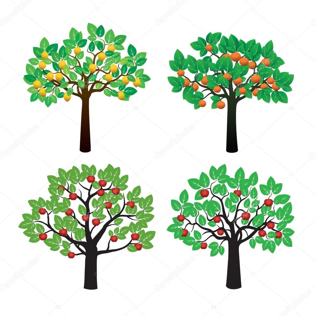 Set of Fruits Tree. Vector Illustration.