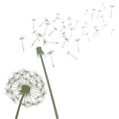 Green vector dandelions