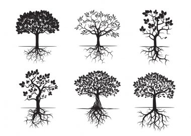 Collection of Black Trees and Roots. Vector Illustration.
