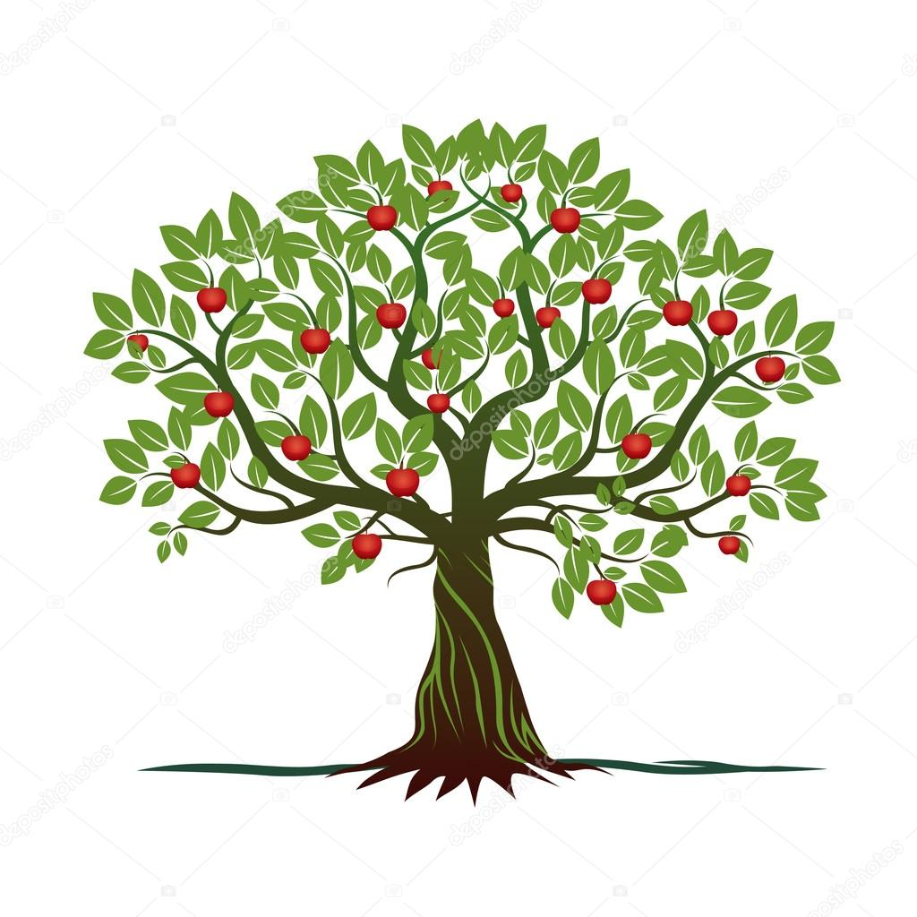rbol con verdes hojas ra ces y manzanas rojas