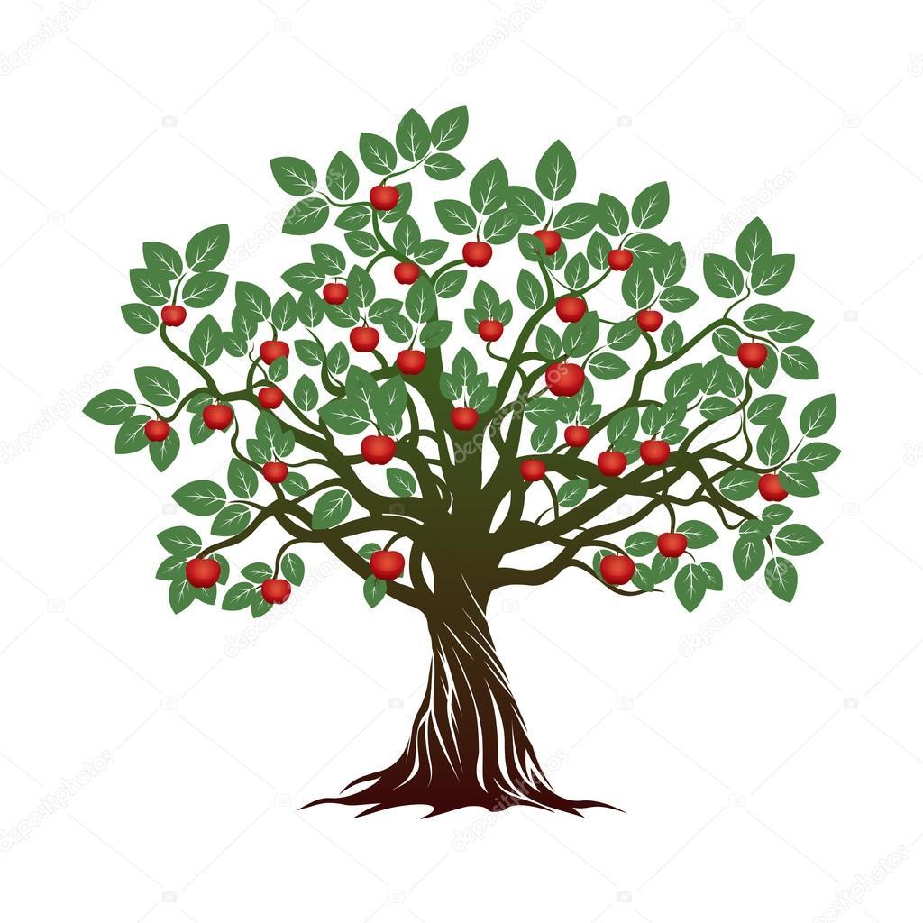 imágenes arboles con raices y frutos Árbol con verdes hojas