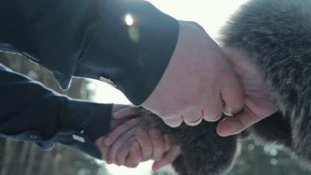 Love - romantic couple holding hands