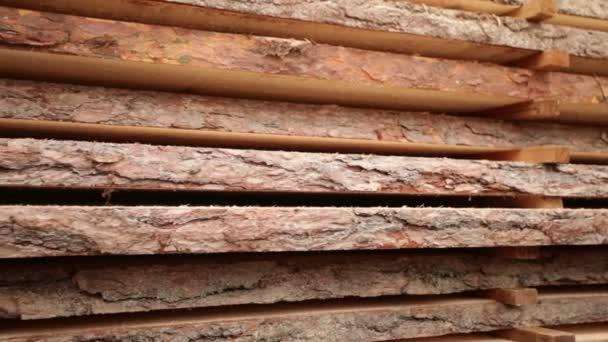 texturou kůry dubu