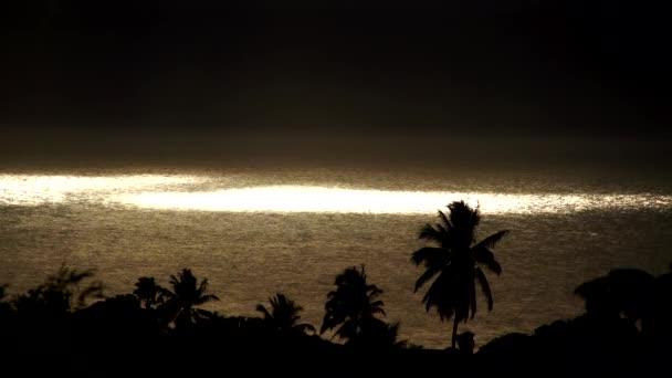 oceán s palmami při západu slunce