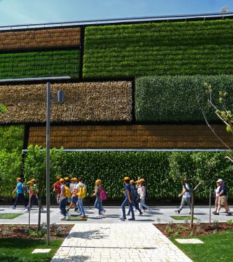 Vertical fields in Expo 2015