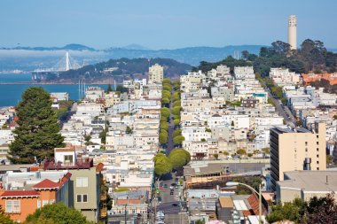 Telegraph hill in San Francisco