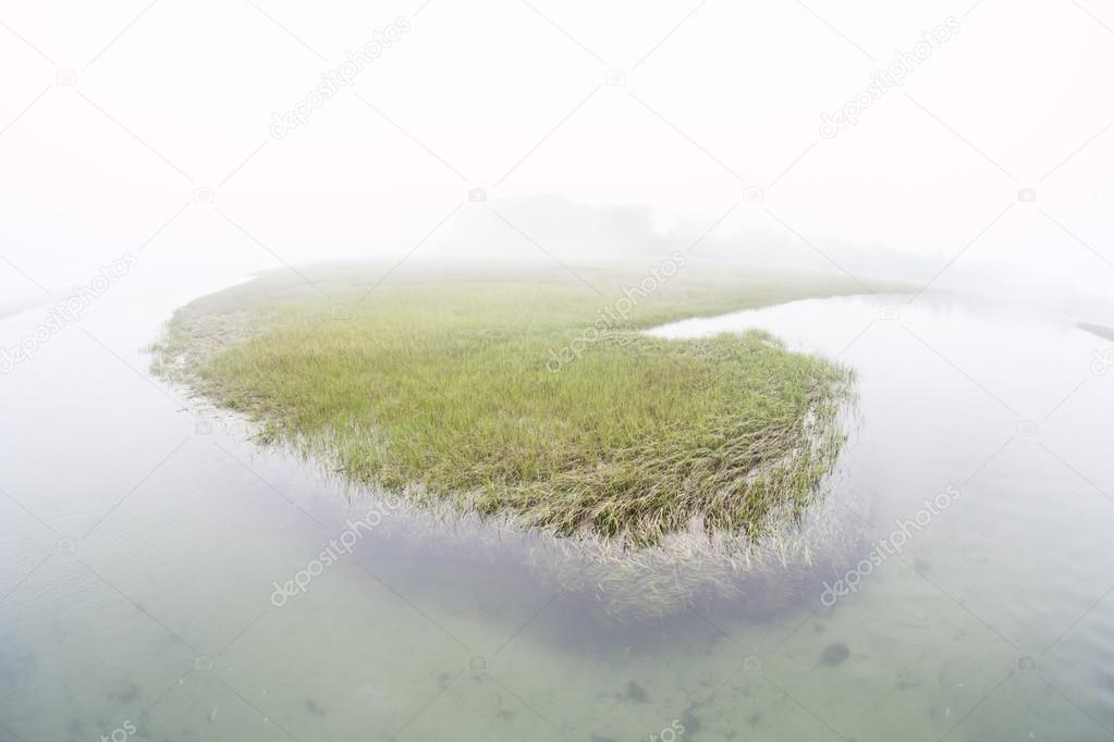 Fog covers a salt marsh in a shallow bay