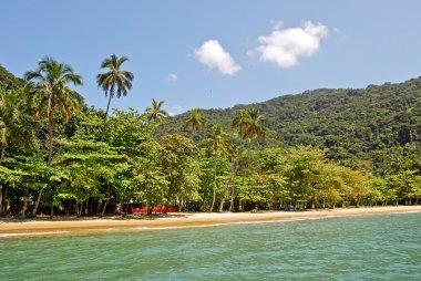 Ilha Grande: Beach Praia Lopes mendes, Rio de Janeiro state, Brazil