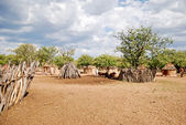Fotografie Himba village with traditional huts near Etosha National Park in Namibia, Africa