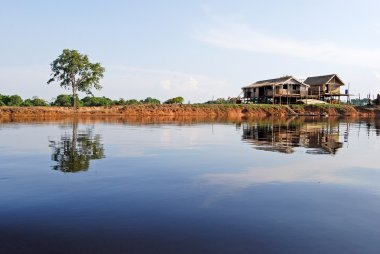 Amazon rainforest: Settlement on the shore of Amazon River near Manaus, Brazil South America