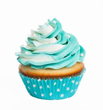 Teal birthday cupcake