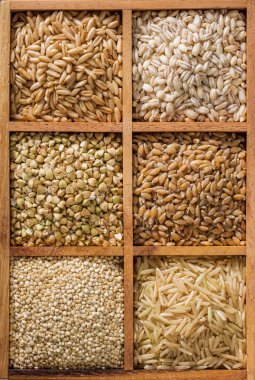 An assortment of healthy whole grains