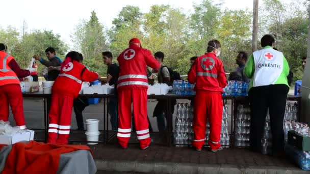 Volunteers from Red cross distributing help for refugees in Hungary