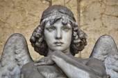 portrét anděl