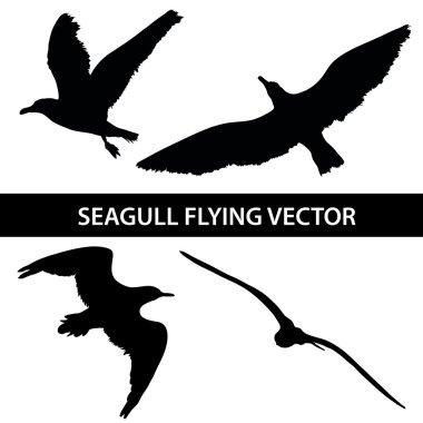 Set of silhouette seagull flying 4 in 1 on white background. Vector illustration