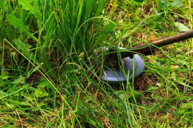 Mowing weeds in garden to petrol trimmer, close-up.