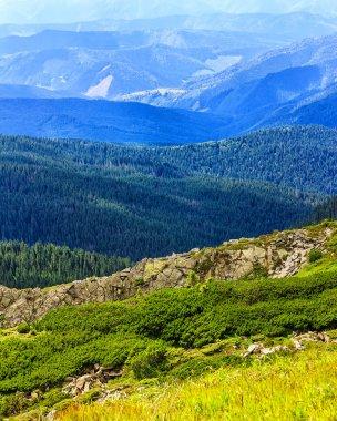 Picturesque Carpathian mountains landscape, view from the height, Chornogora ridge, Ukraine.