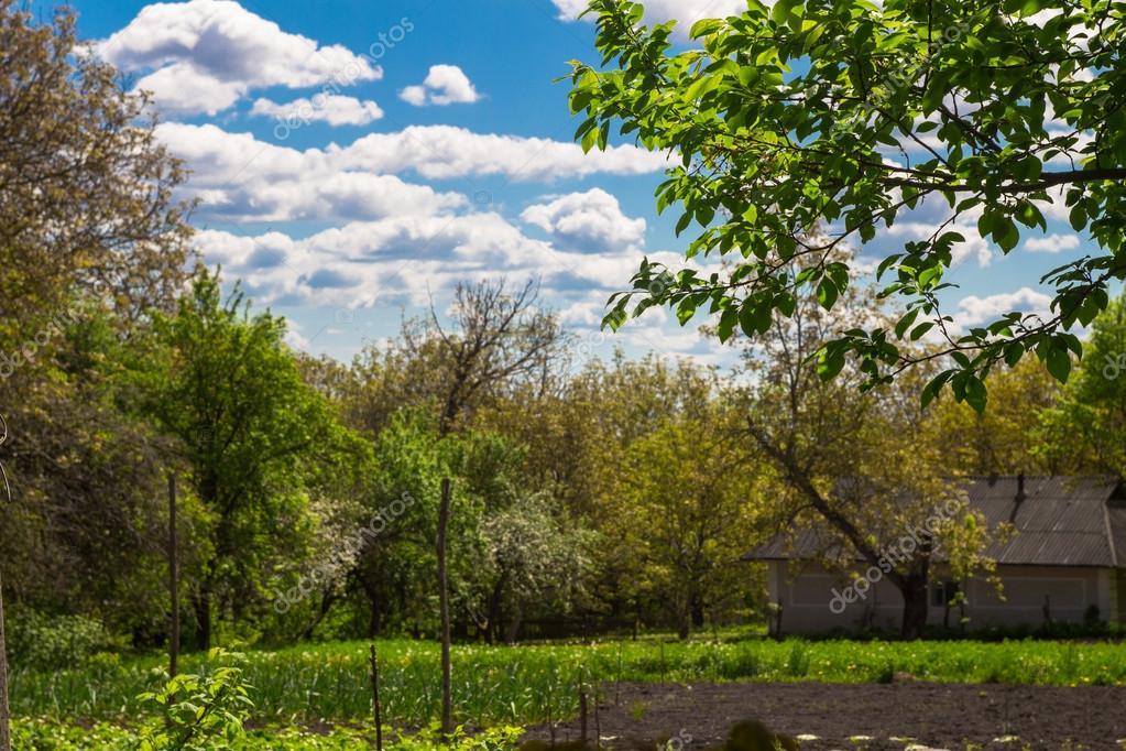 Rural croft overlooking the garden in spring