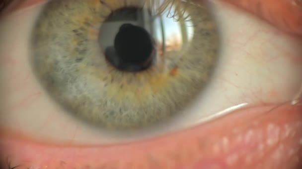 Close up of an woman eye, looking towards camera and blinking, soft focus