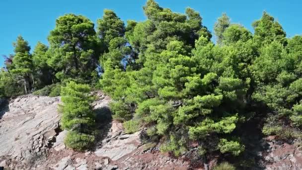 Skalistý svah kopce s rostoucí zelení stromů na něm v Řecku. Zvětšení v praxi, zpomalení