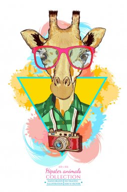 Portrait of fashion giraffe, hipster animals