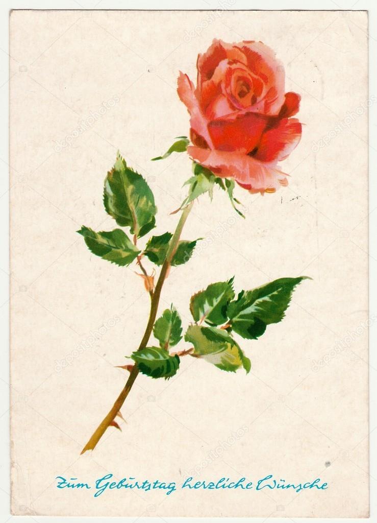 Carte Postale Vintage Montre Rose Carte Postale Imprimee En Rda