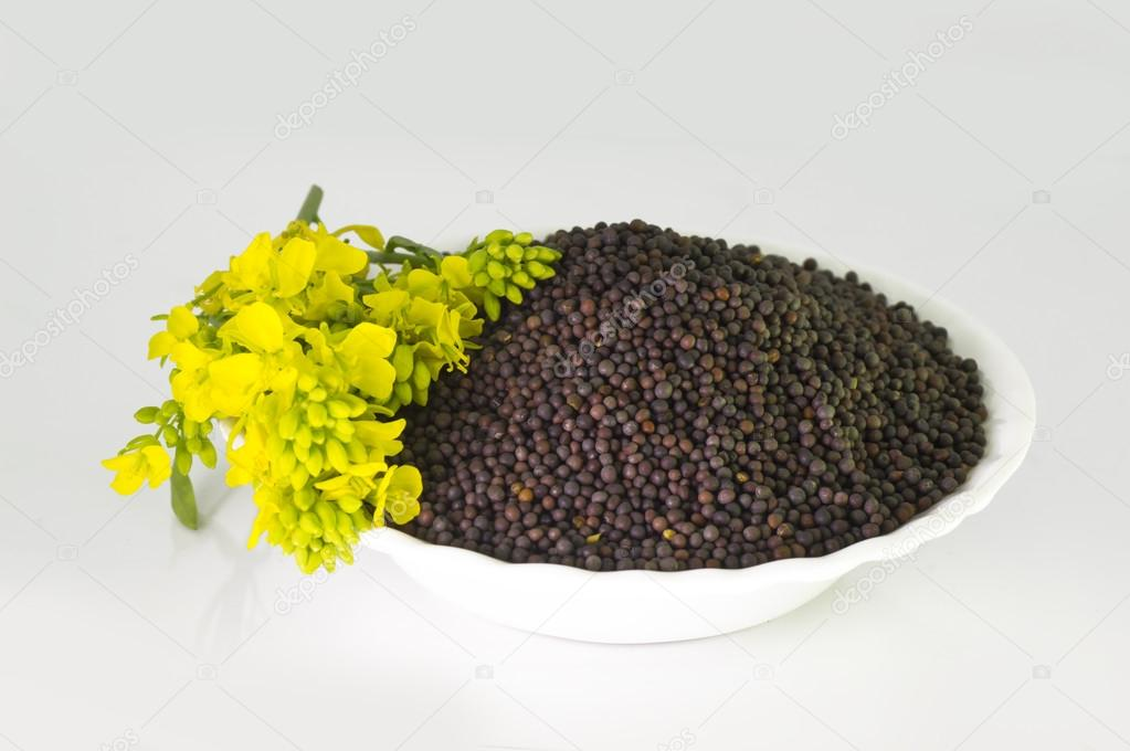 Heap of Brown Mustard seeds in bowl and mustard flower