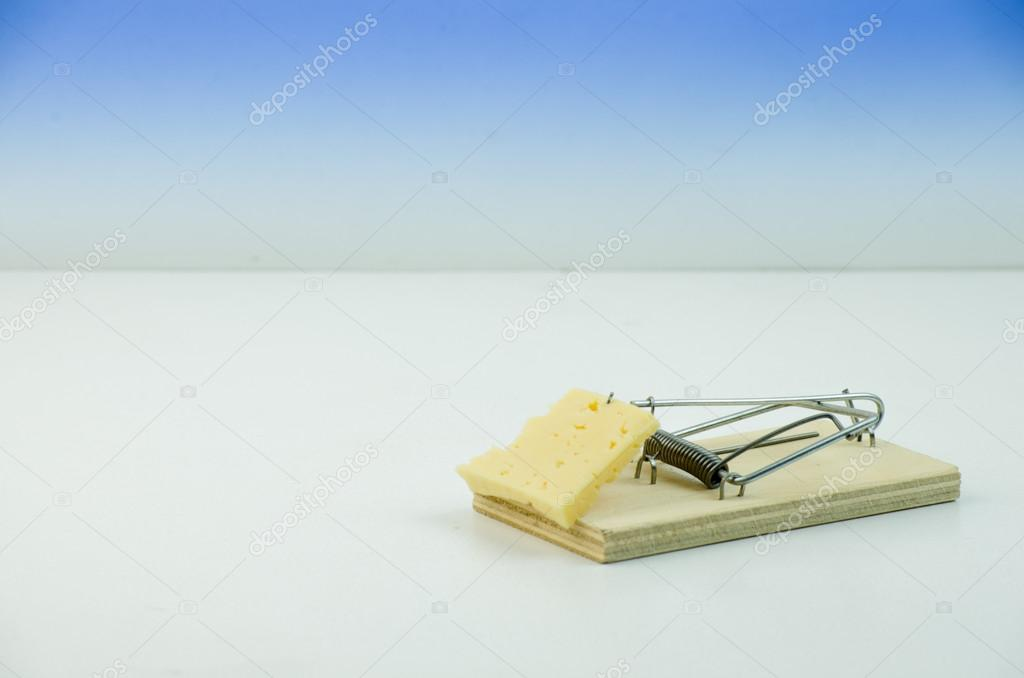 Cheese in mousetrap