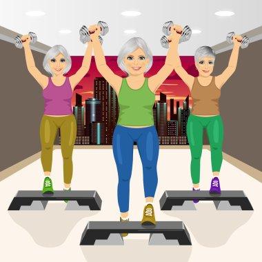 three senior women doing aerobic exercises at gym
