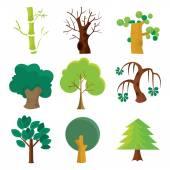 Fotografia collezione albero