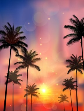 Silhouette of palm tree when of sunset