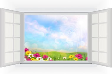 Beautiful summer with flowers of opened window view
