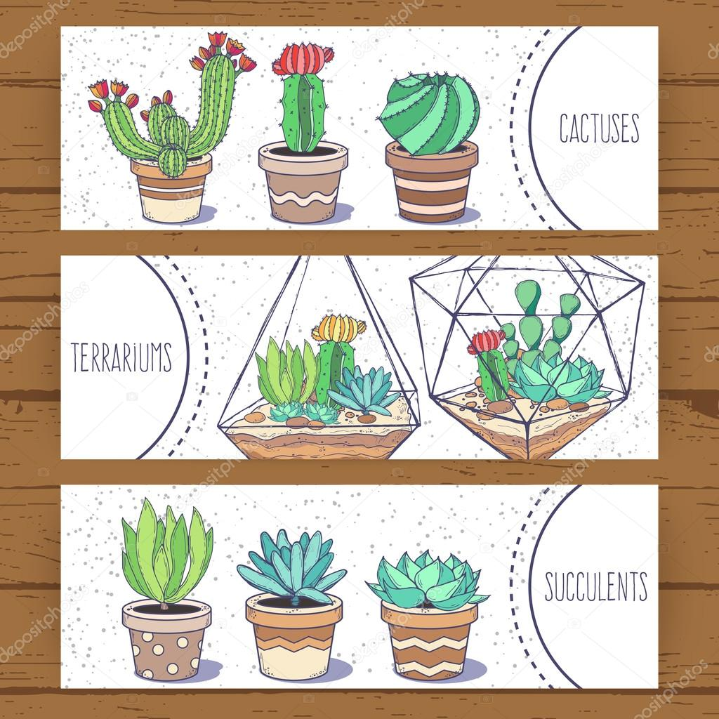 Succulents and cactus banners