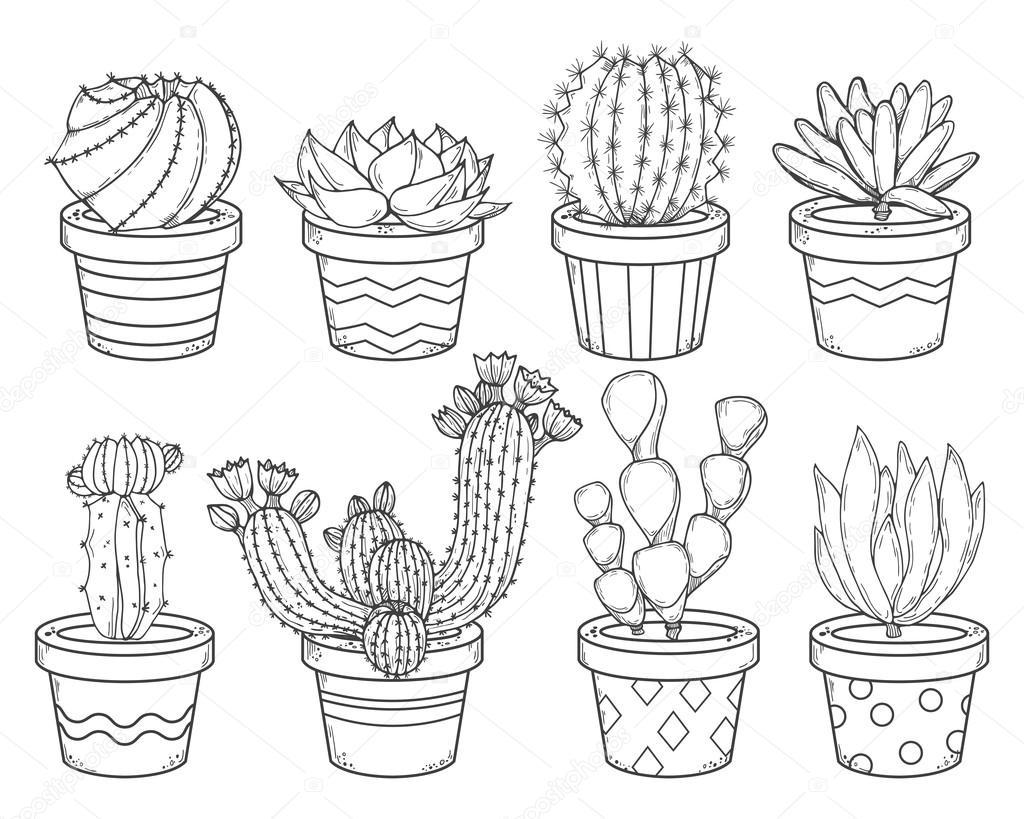 contorno de cactus y suculentas vector de stock
