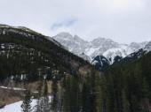 Skalnaté hory provinčního parku Kananaskis