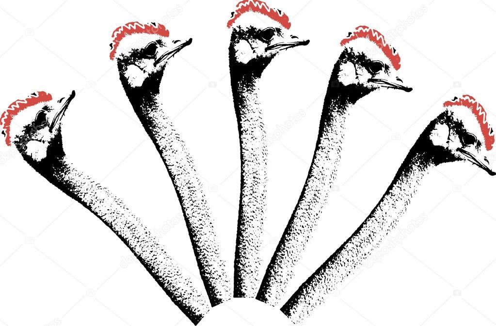 El çekilmiş Zentangle Devekuşu Boyama Sayfası Logo T Gömlek