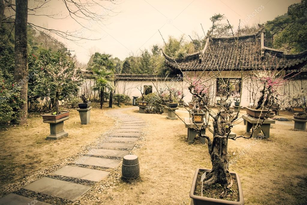 Bonsai y jardines chinos Fotos de Stock liushengfilm 71870271