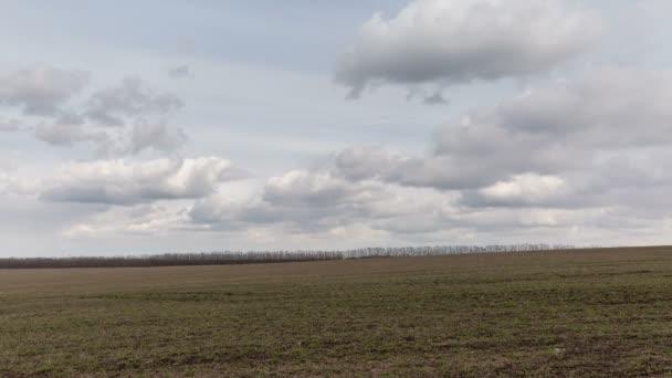 Russland, Timelapse. Die Bewegung der Wolken über die Felder der Winterweizen im zeitigen Frühjahr in den weiten Steppen des Don