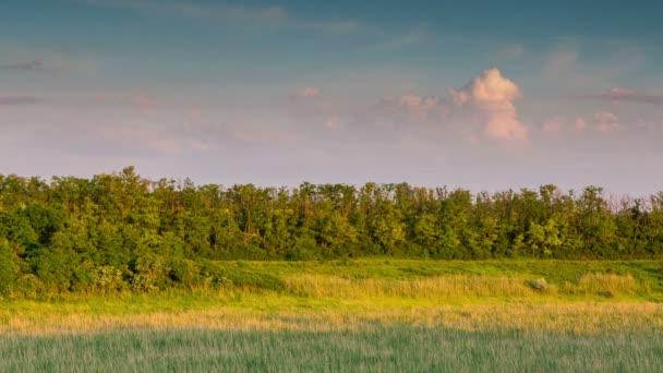 Sonnenuntergang in der Don-steppe